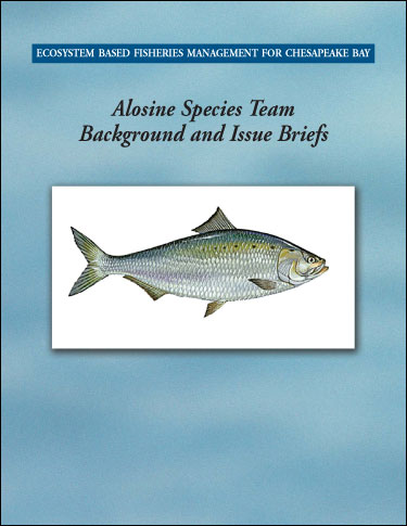 Cover image of Ecosystem-Based Fisheries Management for Chesapeake Bay: Alosine Background and Issues Briefs.