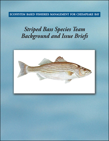 Cover image of Ecosystem-Based Fisheries Management for Chesapeake Bay: Striped Bass Background and Issues Briefs.