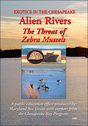 Cover image of Exotics in the Chesapeake--Alien Rivers: The Threat of Zebra Mussels (DVD).