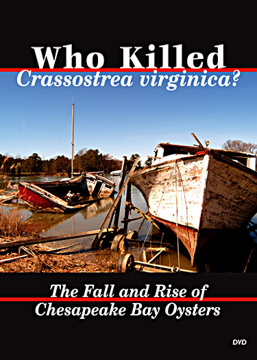 Cover image of Who Killed  Crassostrea virginica : The Fall and Rise of Chesapeake Bay Oysters.